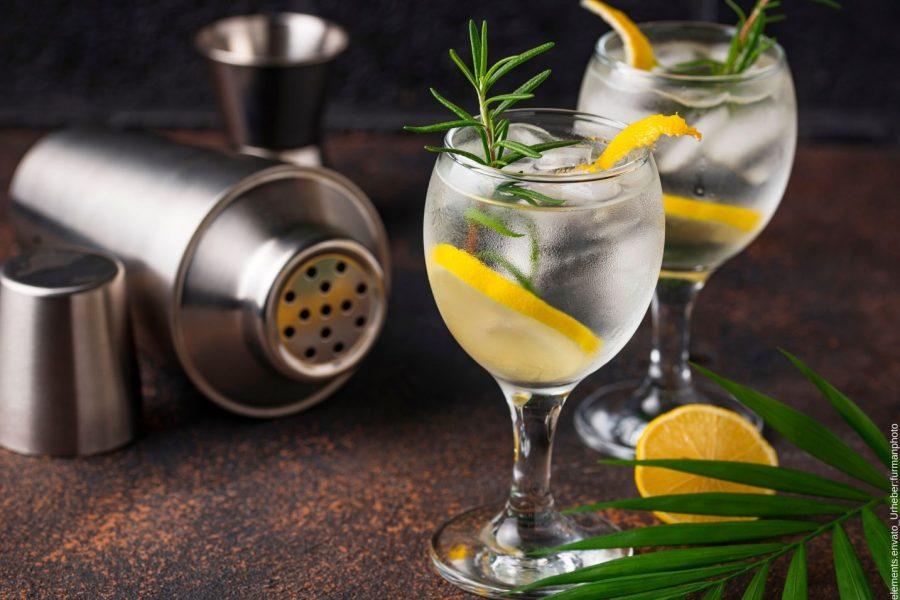 Gin Trend Deutschland und dessen Tastings